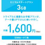 """「格安SIMの""""BIC SIM""""で今の自分には十分だった」 """"BIC SIM ミニマムスタートプラン""""のレビューです"""
